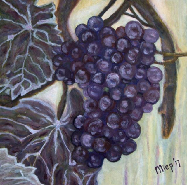 03 Druiven (3).jpg